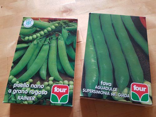 そら豆やグリーンピースの種