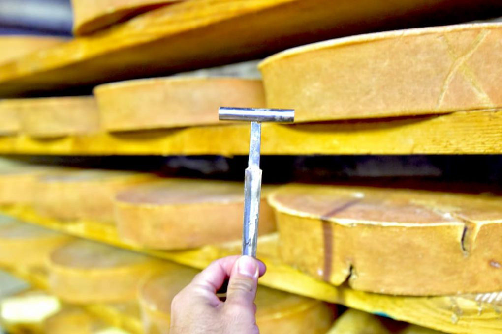 チーズの検査道具マルテッロ