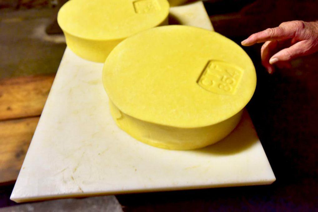 できたばかりのフォンティーナチーズ