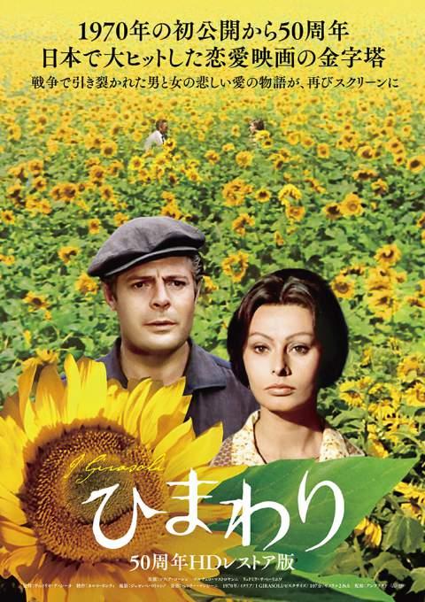イタリア映画「ひまわり」のポスター