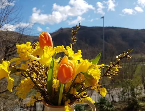 花瓶に入った黄色い花々