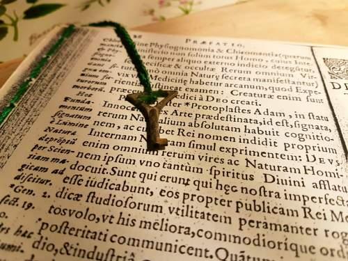 ロレッタがひと冬かけて読んだ薬草古書のコピー