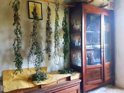 ロレッタの家の中はまるでハーブ博物館