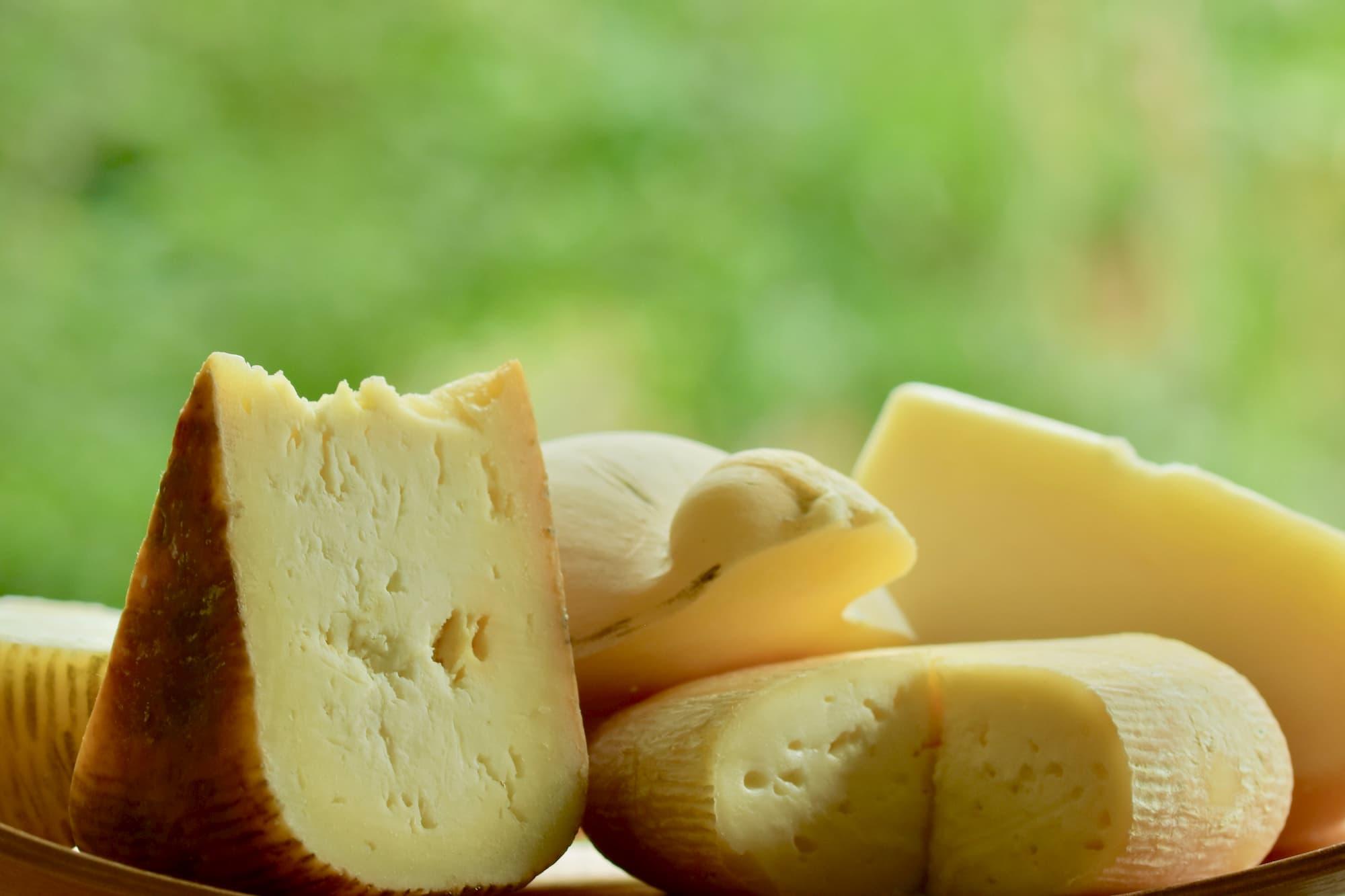 放牧された牛の乳でできたチーズ各種。同じ乳製品でも、毎日味が異なることを味覚で次世代に教えることは重要