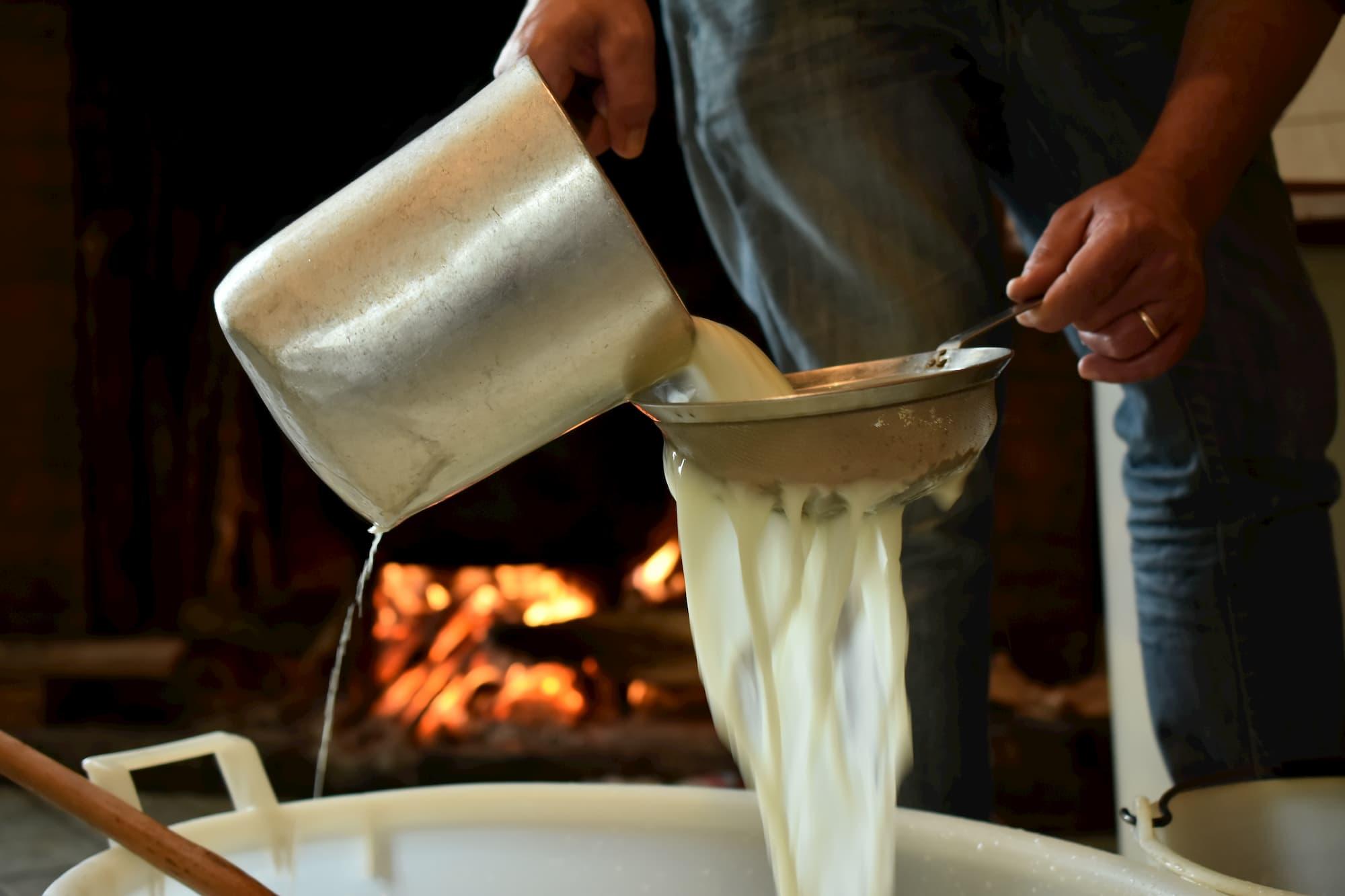 チーズ工房に運ばれた搾乳を終えた生乳