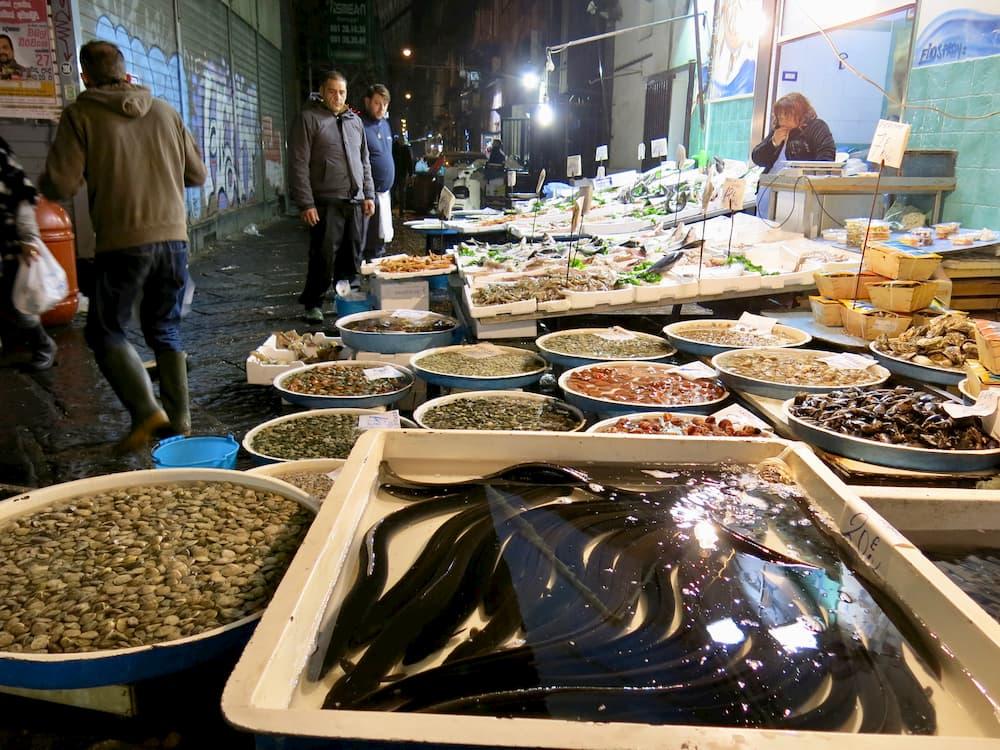 生きたままのウナギを売る魚屋(ナポリ)