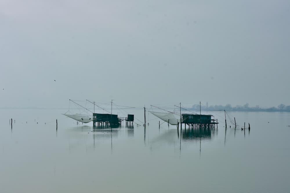 デルタ地帯では、かつての養殖所見学やバードウォッチングのボートツアーが人気