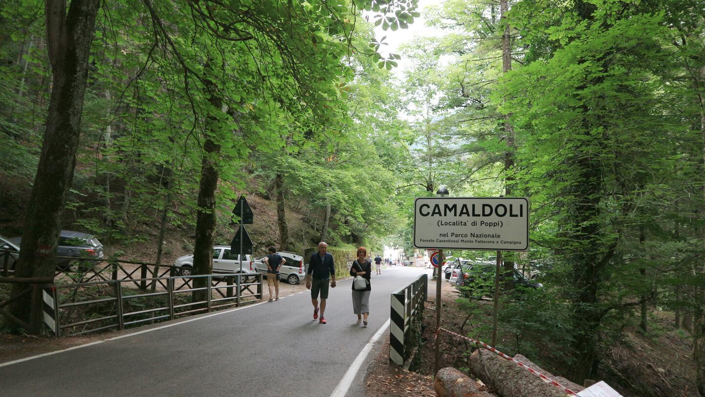カマルドリへの道