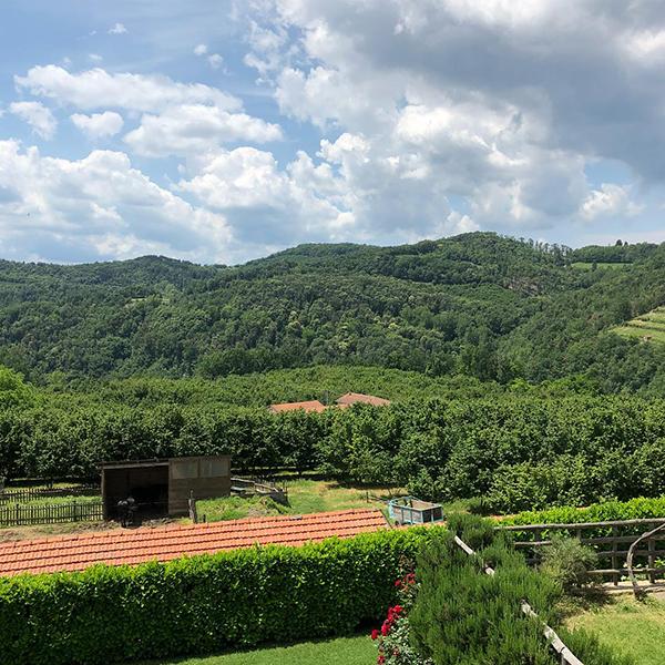バッロエロ農園の外観