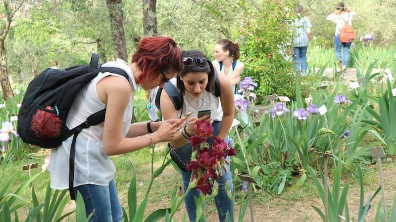 アイリスガーデン(il giardino delle rose dell'iris)